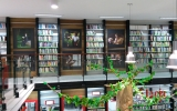 wystawa mroczek i majkowski biblioteka rumia (1)