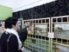 galeria-redzkie-impresje-2010-wernisaz-079