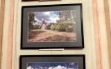 Wystawa Reda i kaszubskie pejzaze _189