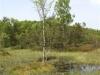 plenerszemud2010-126