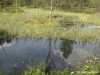 plenerszemud2010-137