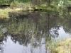 plenerszemud2010-156