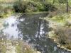 plenerszemud2010-161