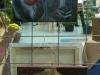 galeria-redzkie-impresje-2008-131