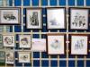 galeria-v-dni-kultury-powiatu-wejherowskiego-2009-206