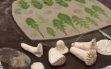 warsztaty-ceramiczne-kunszt-reda-2020-10