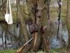 fot-wlodzimierz-tkaczyk