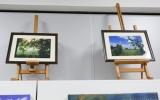 Wystawa Redzkie Impresje 2015r. - prace (38).jpg